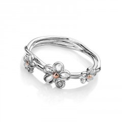 Prsten Hot Diamonds Forget me not RG DR214 (2)